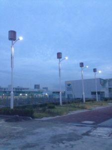 10м 80Вт светодиод вертикальной оси ветровой турбины/солнечного ветра гибридный Стрит лампа