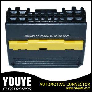 Компания Molex автомобильный разъем 20p 104213-2011