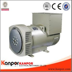 Kanpor AVR二重忍耐のFuan福建省のブラシレス交流発電機