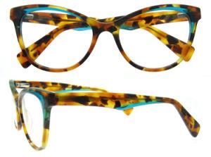 De hete Verkopende Frames van de Glazen van de Frames van het Oogglas van het Ontwerp Optische Recentste voor Meisjes
