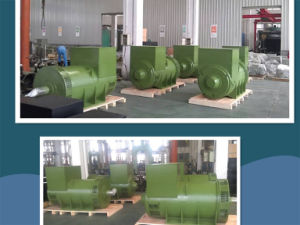 ファラデーウーシーAC Diesel Generators Alternator Synchronous Alternator/600V 50Hz 2250kVA Generator! ! !