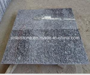 Het opgepoetste Witte Graniet van de Nevel voor de Tegel van de Trede of van de Vloer