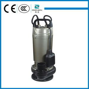 Pompa ad acqua sommergibile del motore elettrico di serie di QDX 750 watt per acque pulite