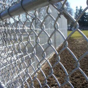 Elo da Corrente de cerca de malha de arame para vedação de Jardim