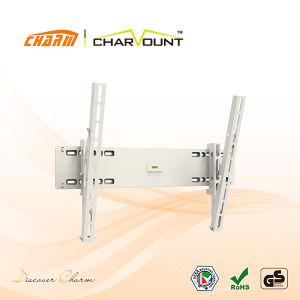 보편적인 경사 LED LCD 텔레비젼 부류 (CT-PLB-LA103W)
