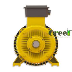 Alta calidad de 500kw generador hidroeléctrico de imán permanente de uso