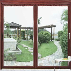 Windows incorniciato metallo residenziale con doppio vetro (FT-W126)