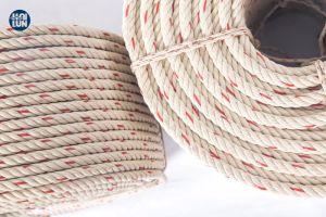 Высокое качество 3/4 ветви из полипропилена PP/PE поверните Danline нейлон полиамид морской веревки для рыбной ловли