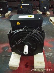 Generatore sincrono senza spazzola 224D 40kw di CA