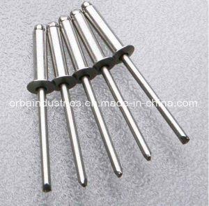 ドームヘッドSsのリベットのステンレス鋼のリベット