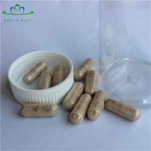 La certificación ISO Hawthorn flavona cápsulas de extracto de la hoja de un 40%