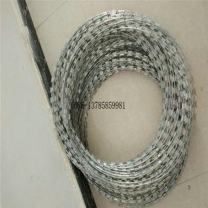 La garantía de calidad Bto-22 hoja de afeitar el alambre de púas