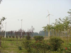 Piccola turbina del generatore di vento di nuovo disegno per uso marino della casa o della nave