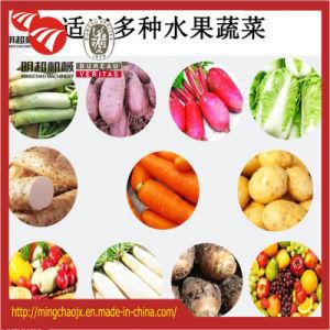 La nourriture végétale de séchage de fruits de la machine en stock