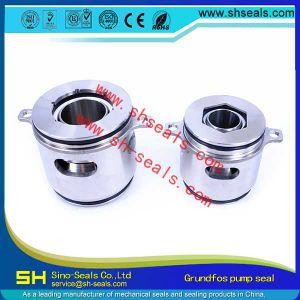 Sh-gr.-Se-22mm de Verbinding van de Schacht voor de Pompen van de Reeks van Se van de Pomp Grundfos