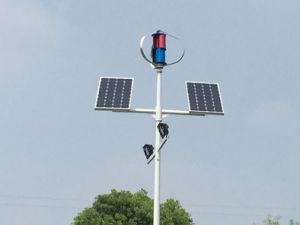 街灯のための熱い販売の中国200W 12V/24Vの風力か風発電機