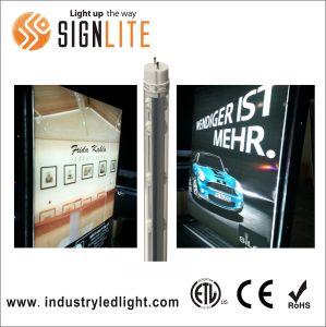 F48t12 Tubo Fluorescente LED T8 de sustitución del tubo de actualización