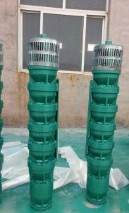 熱い販売の標準深い井戸の可潜艇ポンプ