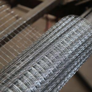 熱い販売は1X1すべてステンレス鋼の溶接された金網を大きさで分類する
