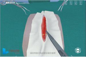 Cirurgia Animal Rumenotomy Software de Sistema de treino de simulação virtual