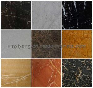 De opgepoetste Zwarte & Witte Marmeren Tegel van de Steen voor Vloer, Muur