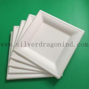 Biodégradable de qualité alimentaire La canne à sucre plaque jetables de pâte à papier