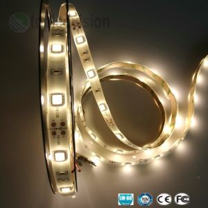 High Bright5050 Fita LED SMD luz codificadora 12V DC