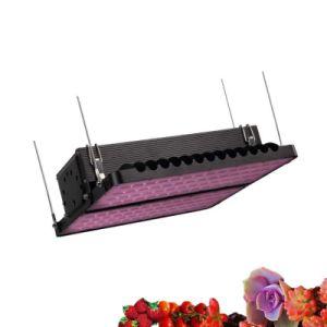 La planta crecer LED de alta potencia 400W de luz 800W 1200W 1600W