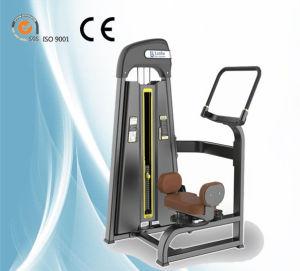 Macchina rotativa commerciale del torso della strumentazione di sport di esercitazione della costruzione di corpo di forma fisica di ginnastica