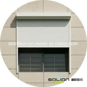 Il rullo isolato pelle gemellare Shutters la finestra