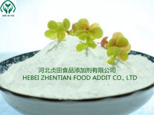 Benzoate van het natrium 532-32-1 Additieven van de Rang van het Voedsel van het Poeder