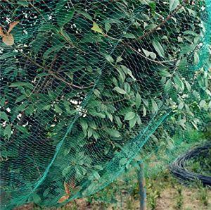 中国の100%年のHDPEの緑の平らな反鳥の塀の庭のネット