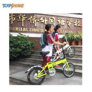 中国の製造のセリウムの良質の小型安いEbikeの電気バイク