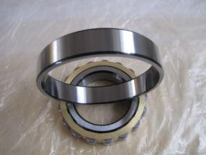 Doppelte Reihen-volle zylinderförmige Rollenlager SL18 5005