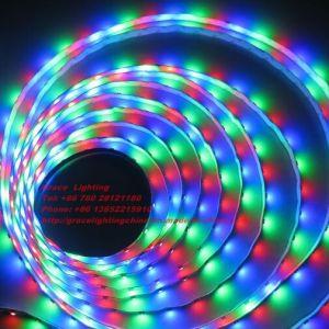 60 LEDs RGB/M5050 SMD DC12V tira de LED de estoque (G-5050-12SMD V-60-RGB)