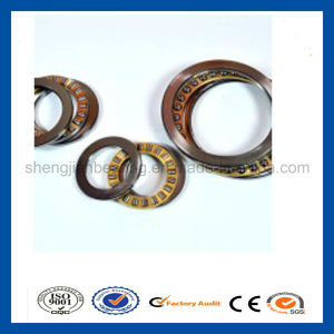 World Brand NSK/SKF Thrust Cylindrical Roller Bearings 81192/81196/811/500 811/530 811/560