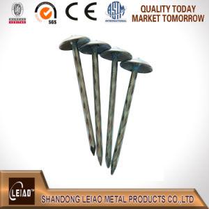 China techado de mejor calidad de los clavos galvanizados