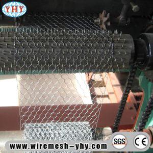 2  Altura 1 Electro Abertura metálicas sextavado galvanizado para o gerador de aves de capoeira