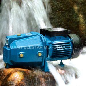 Elestar 세륨을%s 가진 지상 Sel 프라이밍 수도 펌프는 승인했다 (JET-B)