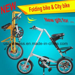 성인을%s 알루미늄 합금을%s 가진 싼 도시 접히는 자전거