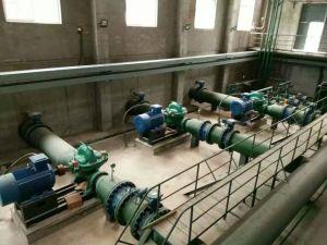 Pompa ad acqua lungo un asse spaccata di drenaggio dell'uscita di alto flusso di caso grande