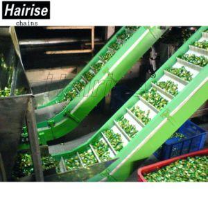 Convoyeur à courroie en plastique Hairise incliné avec Baffer pour industrie alimentaire