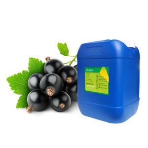 Grosella esencia aromatizantes aditivos alimentarios