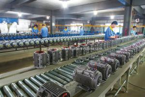 CE approuvé Yej2 série en trois phases du moteur électrique du frein électromagnétique