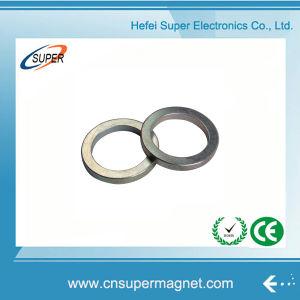 Китай производитель оптовой NdFeB кольцевым магнитом