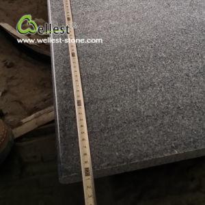 よい価格の暗い灰色の磨かれた花こう岩の床タイル