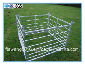 Aço galvanizado Ovinos /Bovinos com barreiras /Caneta cerca /painel de esgrima com os circuitos