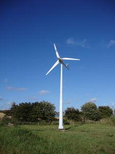 China alimentación fabricante pequeño generador de energía eólica con CE