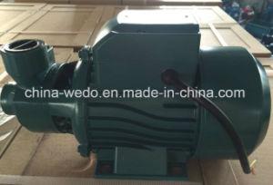 Electric QB80 Bomba de Agua Potable, qb de la bomba de agua de 0,75 KW/1CV