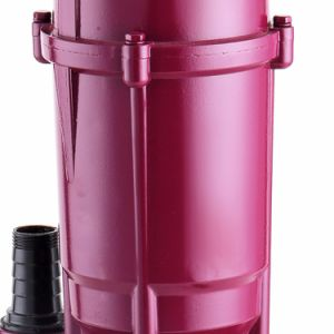 Qdx Sersies 220 볼트 단일 위상 압력 깨끗한 물을%s 잠수할 수 있는 수도 펌프